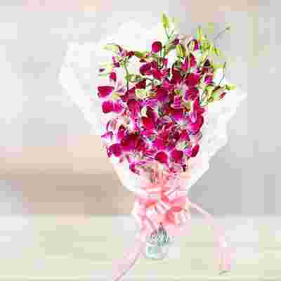 Dreamy Orchids Presents