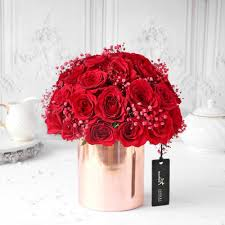 Lovely Red Carnation In Red Wrapping